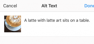A screenshot of writing alt text for an Instagram image.