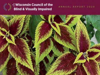 Annual Report 2020 thumbnail