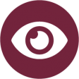 Vision Services icon